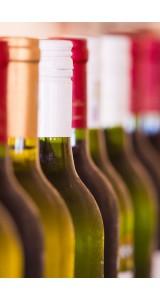 12 Bottle Expert Mixed Case