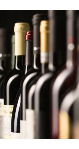 12 Bottle Expert Reds Case