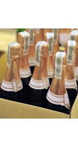 Expert Champagne & Fizz case 6 bottles
