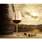 6 Bottle Expert Reds Case